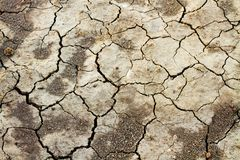 Parched Earth Indicating Drought Stock Photos