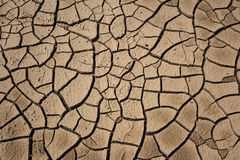 Parched Earth royalty free stock photo