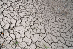 Parched ground Stock Image