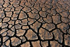 Parched land royalty free stock photography