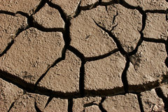 Parched land Royalty Free Stock Photo