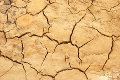 Parched land. Brown muddy ground parched and cracked background Stock Photography