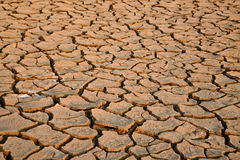 Parched land Royalty Free Stock Image