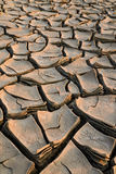 Parched land Royalty Free Stock Photos