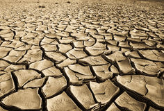 Parched land. Cracked, parched land after a drought Stock Image