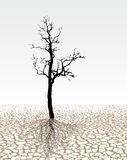 Parched land. Surrealist illustration extremely cracked dried ground Stock Photography