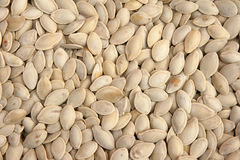 Parched pumpkin seeds Stock Images