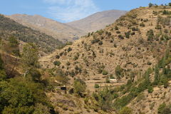 Parched slopes in Sierra Nevada National Park Royalty Free Stock Photo