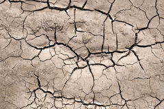 Parched Soil Royalty Free Stock Image