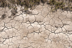 Parched Soil Royalty Free Stock Images