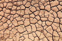 Parched soil during the drought Stock Photography