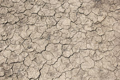 Parched soil Royalty Free Stock Photo