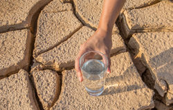 Parched Soil and Water II. Male hand holding a glass of water over parched soil during drought and dry season Stock Photography
