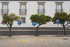 Parcheggio reso non valido Fotografia Stock