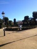 Parchi di Barcellona Immagine Stock