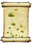 Parchment. Old rough antique parchment paper stock illustration