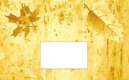 Parchment  autumn Royalty Free Stock Photography