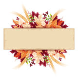 Parchment card with colorful autumn leaves. Vector eps-10. Vector parchment card with colorful autumn leaves Royalty Free Stock Photography