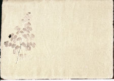 Parchment with inclusion. Royalty Free Stock Photo