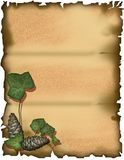 parchment - ivy and pino Royalty Free Stock Photos