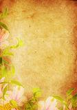 Parchment paper background. Flowers bordering a yellowed parchment paper background vector illustration