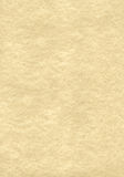 Parchment texture. Sheet of textured old parchment Royalty Free Stock Photography