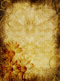 Parchment Textured Background Daisies. Highly detailed, parchment textured grunge background with muted daisies Royalty Free Stock Images