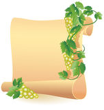 Parchment for your text and grapes Royalty Free Stock Photo