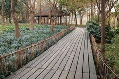 Parco ad ovest del lago nella città di Hangzhou, Cina Via di legno Fotografia Stock