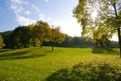 Parco in autunno immagini stock libere da diritti