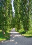 Parco a Bad Mergentheim Fotografia Stock