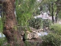 Parco a Barcellona fotografia stock