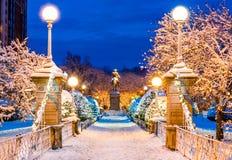 Parco comune congelato di Boston nell'inverno immagine stock libera da diritti