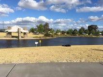 Parco con acqua Immagine Stock Libera da Diritti