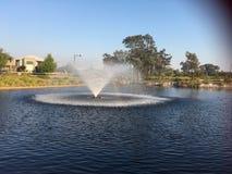 Parco con acqua Fotografia Stock