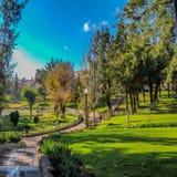 Parco con i percorsi di pietra, la vegetazione verde e uno stagno immagini stock libere da diritti