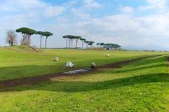 Parco degli Acquedotti śnieżne piłki, Rzym, Włochy Zdjęcie Royalty Free