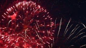 Parco dei fuochi d'artificio variopinto stock footage
