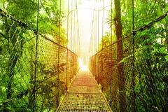 Parco dei ponti di attaccatura di Arenal del Costa Rica Fotografie Stock Libere da Diritti