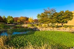 Parco dei tumuli in Gyeongju Fotografie Stock Libere da Diritti