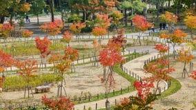 Parco del castello di Osaka immagini stock libere da diritti