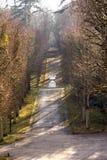 Parco del castello Saint-Cloud - in Francia Fotografia Stock Libera da Diritti