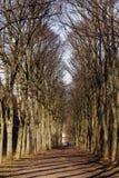 Parco del castello Saint-Cloud - in Francia Immagini Stock