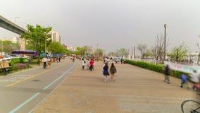 Parco del centro di Seoul Watefront stock footage