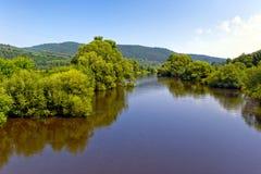 Parco del fiume di Bobr, paesaggio della valle di Bobr, Polonia Fotografie Stock