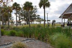 Parco del fronte lago di Kissimmee Fotografie Stock