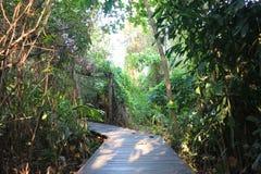 Parco del giardino Immagini Stock Libere da Diritti