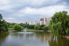 Parco del lago Fotografia Stock Libera da Diritti