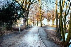 Parco del lago Alster, Amburgo Immagini Stock