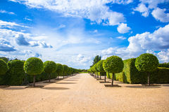 Parco del palazzo di Rundale Fotografia Stock